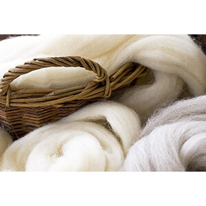 Wool Fibre The Basic Things About Wool