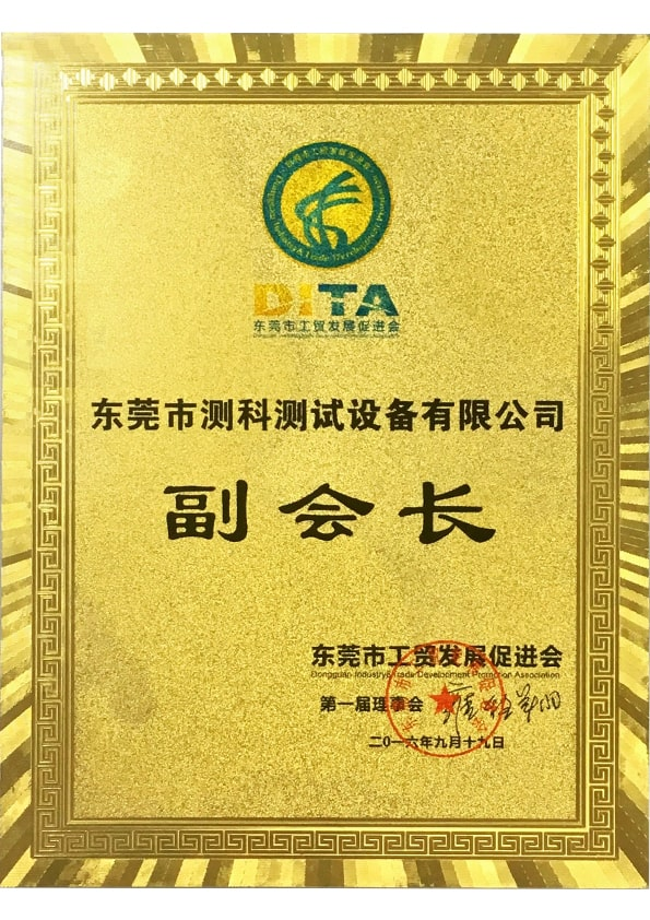 Vice-President in Dongguan Industry and Trade Development Promotion Association
